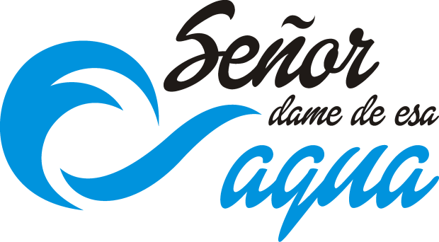 Logo Aguinaldo 2017 02
